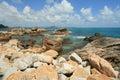 Coral Cove Stock Photo