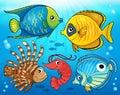 Coral fauna theme image 4 Royalty Free Stock Photo
