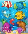 Coral fauna theme image 3 Royalty Free Stock Photo