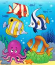 Coral fauna theme image 5 Royalty Free Stock Photo