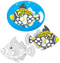 Coral fish clown triggerfish three versions of the vector illustration in a cartoony style Stock Photo