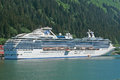 Coral princess Stockbilder
