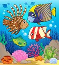 Coral reef fish theme image 1 Royalty Free Stock Photo