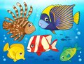 Coral reef fish theme image 3 Royalty Free Stock Photo