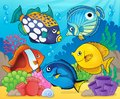Coral reef fish theme image 8 Royalty Free Stock Photo