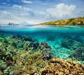 Coral reef on the island of menjangan indonesia beautiful background cloudy sky and volcano Stock Images