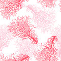 Coral reef seamless pattern
