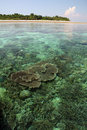 Coral reef seascape sipadan island borneo Stock Photos