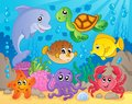 Coral reef theme image 5 Royalty Free Stock Photo