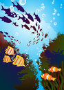 Coral reefs and colored fishes underwater world Stock Photo