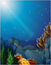 Corals and seaweeds under the sea illustration of Stock Photos