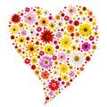 Coração da mola Imagem de Stock