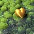 Corazón de oro que miente en piedras en forma de corazón cubiertas de musgo al lado de una charca superficie del agua Imágenes de archivo libres de regalías