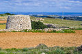 Corbelled stone hut a corbel led and a cultivated field with crops in the maltese countryside in the background is the island of Stock Images