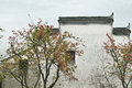 The Corbie Gable Of Chinese Fo...