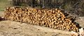 Cord of seasoned firewood this is the site a local farm in bartlett tennessee the majority this wood is destined for local homes Royalty Free Stock Photo