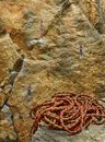 Corde et roche s'élevantes Photos stock