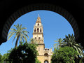 Cordoba Cathedral Arch Framed Royalty Free Stock Photo