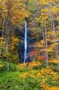 Cores do outono do rio de Oirase Fotos de Stock