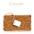 Coriander seeds. Royalty Free Stock Photography