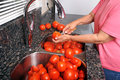 Coring tomatoes for canning. Royalty Free Stock Image