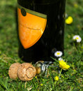 Cork and Bottle of wine Royalty Free Stock Photo