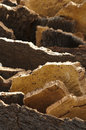 Cork crust Royalty Free Stock Images