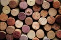 Cork wine Royalty Free Stock Photo