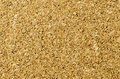 Corkboard texture. Stock Photography