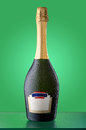 Corked cold bottle of sparkling wine with empty label Royalty Free Stock Photo