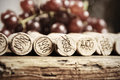 Corks of different wine years in a row red grapes in the back very shallow dof Stock Photography