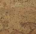 Corkwood background surface of a tile closeup texture Royalty Free Stock Image