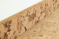 Corkwood floor border on the wall Royalty Free Stock Photos