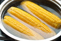 Corn boiling in pot Stock Photo