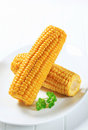 Corn on the cob boiled corns Stock Images