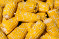 Corn on the cob bucket full of ready for cooking closeup Stock Image