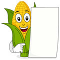 Corn cob character with blank paper a happy cartoon smiling and holding a isolated on white background eps file available Royalty Free Stock Photos