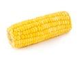 Corn cob close-up Royalty Free Stock Photo