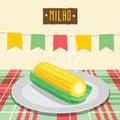 Corn Cob - Festa Junina, brazilian june fest Royalty Free Stock Photo