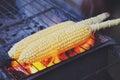 Corn on a cob streetfood of pangkor island malaysia Stock Image