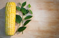 Corn cob on wood background Royalty Free Stock Images