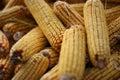 Corn cobs Royalty Free Stock Photo
