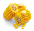 Corn combs isolated on white. Sweetcorn with butter Royalty Free Stock Photo