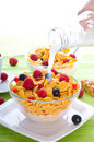Corn flakes Stock Photo