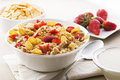 Corn flakes Royalty Free Stock Photo
