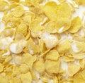 Corn flakes cereals muesli food milk Royalty Free Stock Photo