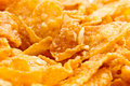 Corn flakes close up Stock Photography