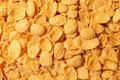 Corn flakes close up whole background Stock Images
