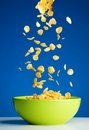 Corn flakes falling to the bowl for breakfast Royalty Free Stock Image