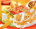 Corn flakes, honey and milk splashes. 3d vector, package design